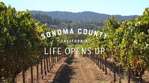 Image result for sonoma county ca